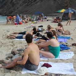 beach (193)