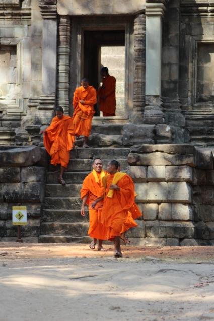 3 cambodia (506)